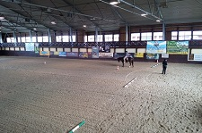 wrc_proster_horse_ranch_celanda_profil
