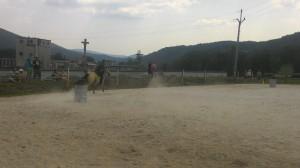ranc_mustang_loucna_032