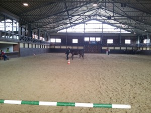 wrc_proster_horse_ranch_celanda_004