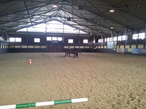 wrc_proster_horse_ranch_celanda_006