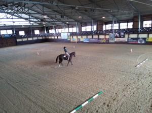 wrc_proster_horse_ranch_celanda_011