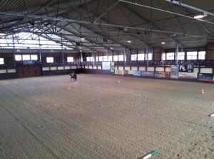 wrc_proster_horse_ranch_celanda_012