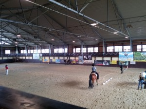 wrc_proster_horse_ranch_celanda_013