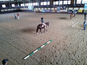 wrc_proster_horse_ranch_celanda_014