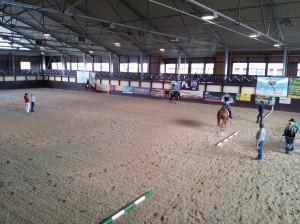 wrc_proster_horse_ranch_celanda_015