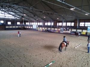 wrc_proster_horse_ranch_celanda_016