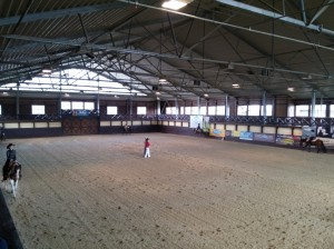 wrc_proster_horse_ranch_celanda_017