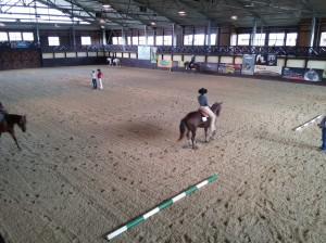 wrc_proster_horse_ranch_celanda_019