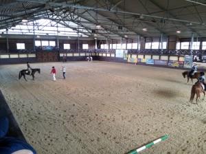 wrc_proster_horse_ranch_celanda_020