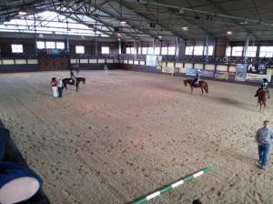 wrc_proster_horse_ranch_celanda_021