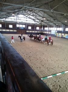 wrc_proster_horse_ranch_celanda_022