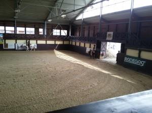 wrc_proster_horse_ranch_celanda_024