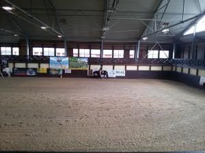 wrc_proster_horse_ranch_celanda_026