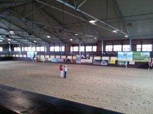wrc_proster_horse_ranch_celanda_027