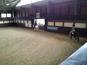 wrc_proster_horse_ranch_celanda_028