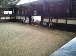 wrc_proster_horse_ranch_celanda_029