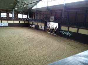 wrc_proster_horse_ranch_celanda_030