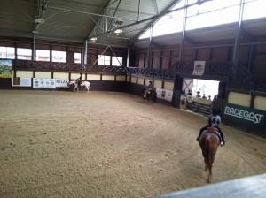 wrc_proster_horse_ranch_celanda_031