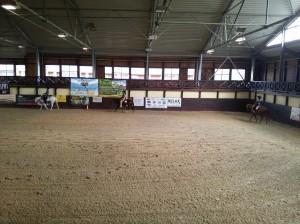 wrc_proster_horse_ranch_celanda_032
