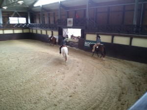 wrc_proster_horse_ranch_celanda_036