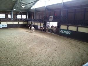 wrc_proster_horse_ranch_celanda_037