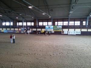 wrc_proster_horse_ranch_celanda_038