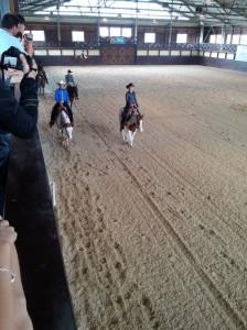 wrc_proster_horse_ranch_celanda_039
