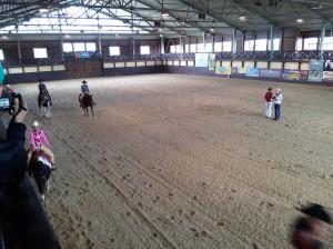 wrc_proster_horse_ranch_celanda_040