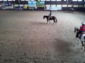 wrc_proster_horse_ranch_celanda_041