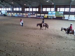 wrc_proster_horse_ranch_celanda_042