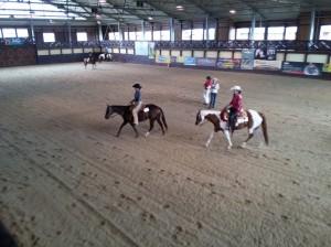 wrc_proster_horse_ranch_celanda_043