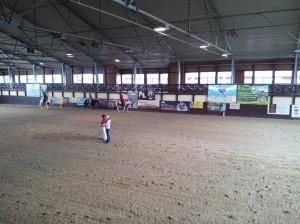wrc_proster_horse_ranch_celanda_044