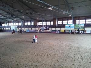 wrc_proster_horse_ranch_celanda_046