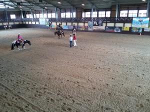 wrc_proster_horse_ranch_celanda_048