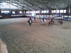 wrc_proster_horse_ranch_celanda_051